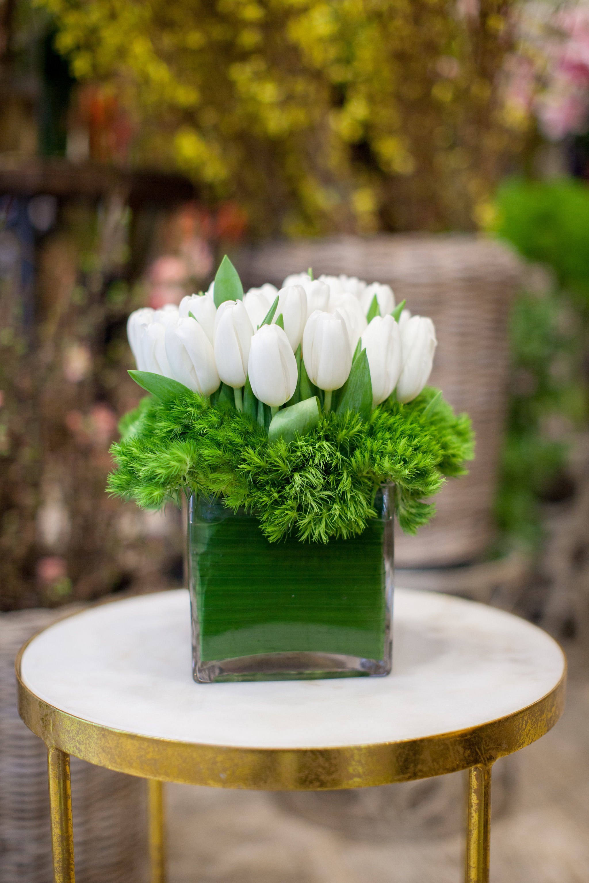 Crisp and Clean Tulips